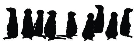 kalahari desert: Meerkats family in different postures vector silhouette illustration. Illustration
