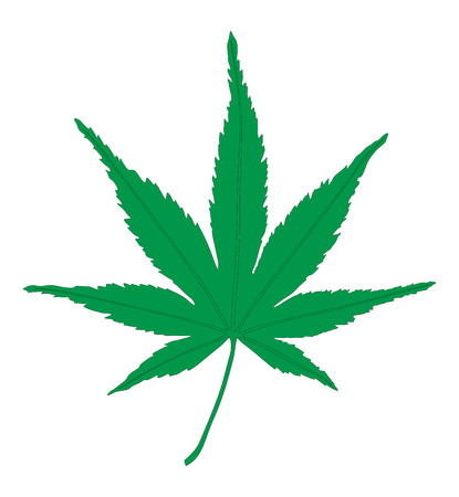 Medical marijuana. Cannabis, vector silhouette illustration. Illustration