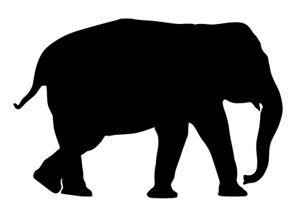 Elephant vector silhouette illustration isolated on white background.