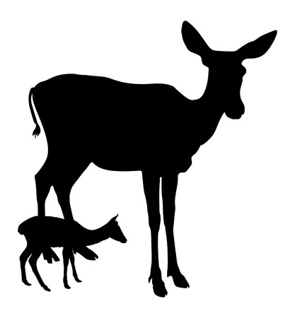 Deer vector silhouette illustration, isolated on white background. Female deer and fawn.