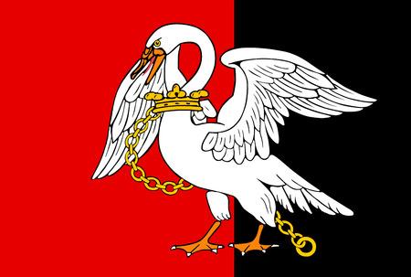Vector flag of Buckinghamshire County, England. United Kingdom. Illustration