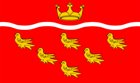 sussex: Vector flag of East Sussex County, England. United Kingdom.