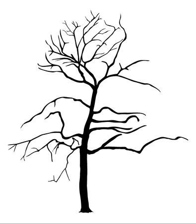 Baum Vektor-Silhouette auf weißem Hintergrund. Herbst oder Frühjahr Kunst Baum. Vektorgrafik