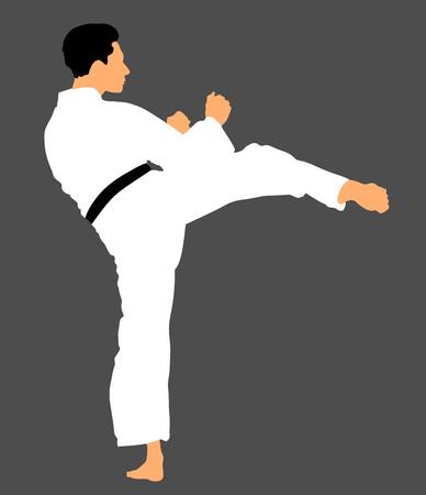 Karate man fighter in kimono, vector illustration. Black belt category. Japan traditional martial art. Self-defense presentation. In healthy body healthy mind.