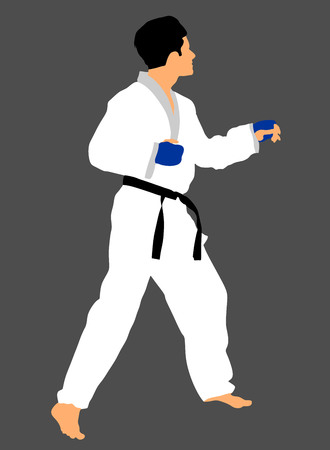 Karate man fighter in kimono, vector illustration. Black belt category. Illustration