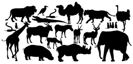 rhino vector: African animals big group vector. lion, elephant, lioness, rhino, hyppo, ostrich, giraffe, crocodile, camel, zebra, antelope, gazzele, cobra sneak.