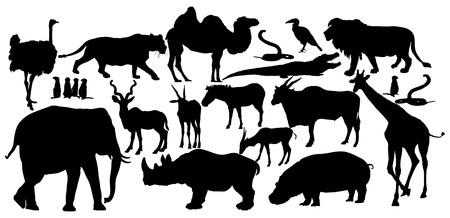 mongoose: African animals big group vector silhouette illustration. lion, elephant, lioness, rhino, hyppo, ostrich, giraffe, crocodile, camel, zebra, antelope, gazzele, cobra sneak. Savanna wildlife animals. Illustration
