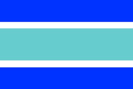 Vectorvlag van Marbella stad, Spanje.