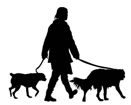 Owner girl walking with dogs vector silhouette illustration, isolated on white background. outdoor activity with pets.