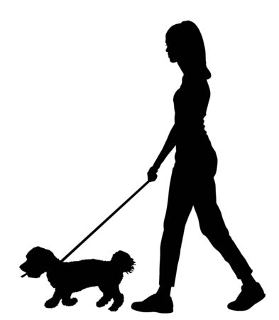 Owner handsome girl walking with dog vector silhouette illustration, isolated on white background. Maltese dog. Lady with cute puppy outdoor. Recreation walk with little friend after work. Relax time.