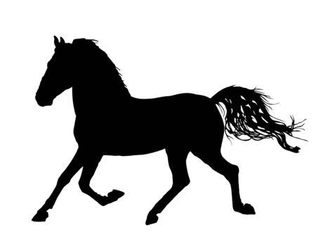 Elegante cavallo al galoppo, illustrazione della siluetta di vettore. Corsa di cavalli, isolata su priorità bassa bianca. Sagoma di cavallo nero. Animale da fattoria. Simbolo di bellissimo animale. Vettoriali