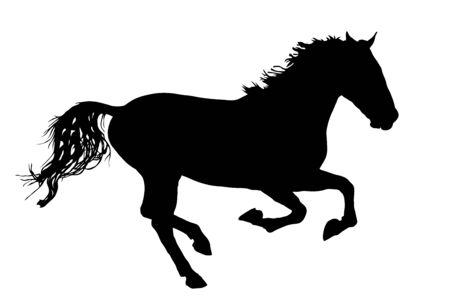 Elegante cavallo al galoppo, illustrazione della siluetta di vettore. Corsa di cavalli, isolata su priorità bassa bianca. Sagoma di cavallo nero. Animale da fattoria. Simbolo di bellissimo animale.