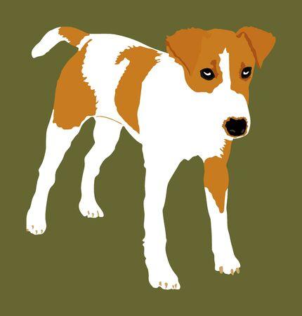 Cute dog portrait vector. Domestic animal. Mixed blood puppy. Half breed dog. Funny pet. Best friend. Family mascot darling. Çizim