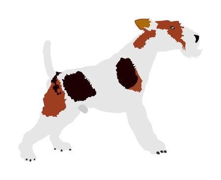 Portrait of Fox Terrier vector illustration isolated. Beware of dog. Vector Illustration