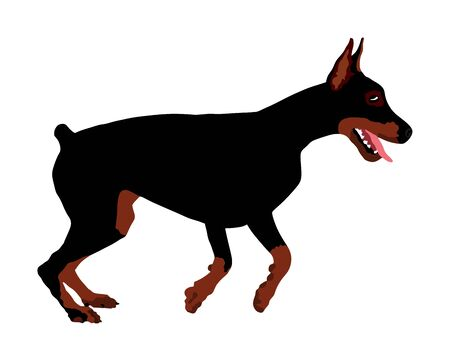 Portrait of Doberman Pincher dog vector illustration isolated. German military guardian dog for detecting smuggling drugs. Beware of dog.  Dog show champion. Best friend. Alert, guard attention. Stock Vector - 129239618