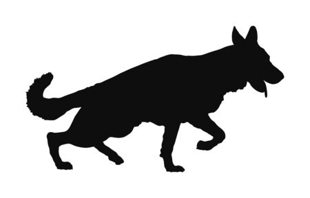 Portrait of German Shepherd running dog vector silhouette isolated. German Shepherd. mans best friend. Lovely pet running. Dog show exhibition. Finder detect explosives and drugs. Rescue finding dog.