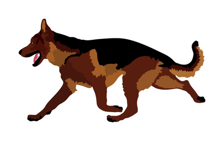 Portrait of German Shepherd dog running illustration isolated.