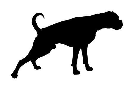 Portrait of Boxer dog vector silhouette illustration isolated.