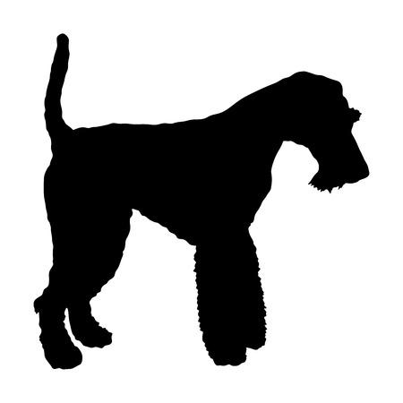 Portrait of Fox Terrier vector silhouette illustration isolated. Vector Illustration