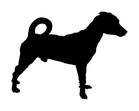Portrait of Jack Russell terrier vector silhouette illustration isolated. Terrier dog standing. Illustration