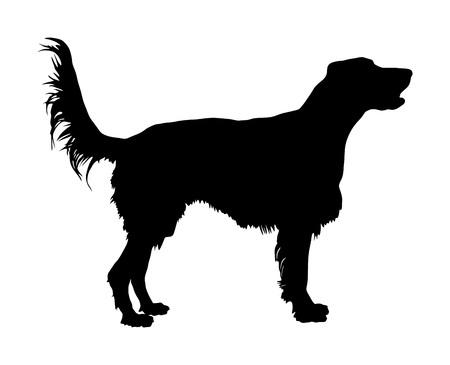 Portrait of Golden Retriever vector silhouette illustration isolated.