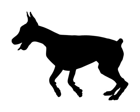 Portrait of Doberman Pincher dog vector silhouette illustration isolated.  German military guardian dog. Dog for detecting smuggling drugs.