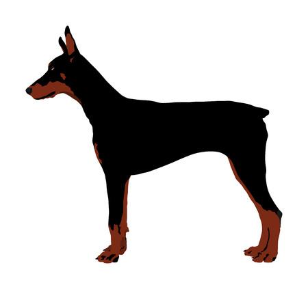 Portrait of Doberman Pincher dog vector illustration isolated. German military guardian dog. Dog for detecting smuggling drugs. Vettoriali