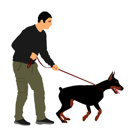 Owner keeps the Doberman pincher champion dog on the leash, vector illustration isolated. Dog show exhibition. Finder detects military explosives and drugs. Rescue activity dog for finding survive. Illustration