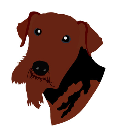 Airedale Terrier had, vector illustration.  Beware of dog.