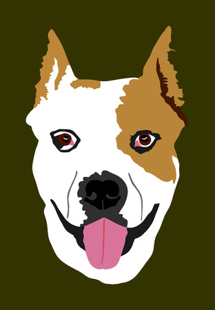 Dog portrait of American Staffordshire pit bull terrier