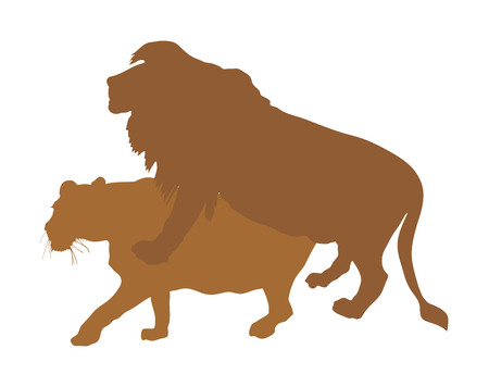 Sex lion vector silhouette illustration isolated on white background. A pair of mating lions in love having sex. Male and female lion tenderness. Erotic of lion mating sex romance.