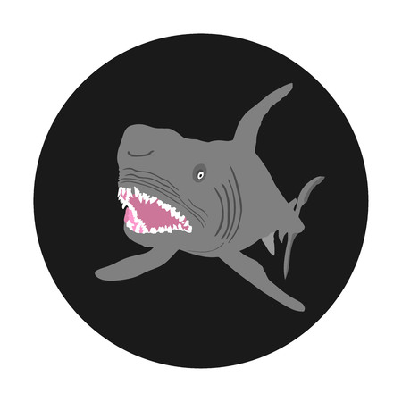 Shark attack vector illustration isolated on black background. Open jaws of beast. Dangers of shark on the beach. Illustration