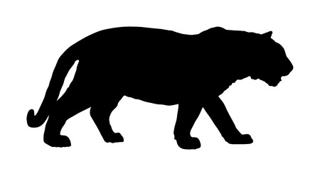 Tiger vector silhouette illustration isolated on white background. Big wild cat. Siberian tiger (Amur tiger - Panthera tigris altaica) or Bengal tiger. Tatoo sign. Illustration