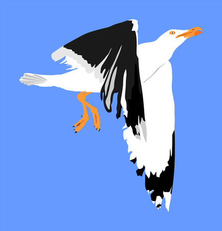 Seagull fly on blue sky background vector illustration, sea or ocean bird with spread wings. Bird fly silhouette. Symbol of liberty and freedom. Çizim