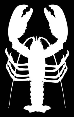 White lobster vector silhouette isolated on black background. Crayfish or Shellfish symbol. Seafood sign for restaurant. Fresh dinner.