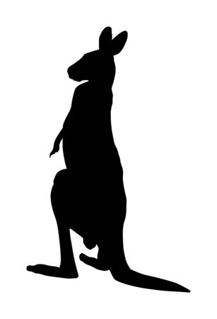 Kangaroo vector silhouette illustration isolated on white background. Australian animal portrait. Tourist symbol souvenir. Fauna best jumper. Zoo attraction.