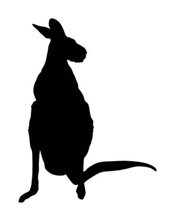 Kangaroo vector silhouette illustration isolated on white background. Australian animal portrait. Tourist symbol souvenir. Fauna best jumper. Zoo attraction. Фото со стока - 129274113