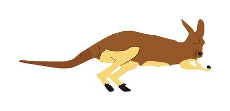 Kangaroo vector illustration isolated on white background. Australian animal portrait. Tourist symbol souvenir. Fauna best jumper. Zoo attraction. Illustration