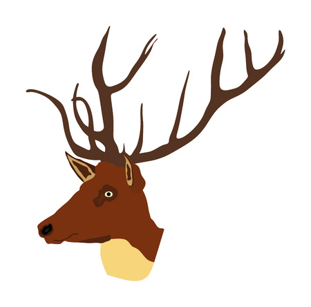 Deer head with antlers vector illustration isolated on white background. Reindeer, proud Noble Deer male trophy. Powerful buck, red deer. Hunter hunting  wild animal, symbol of male power. Ilustracja