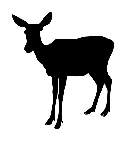 Deer female vector silhouette illustration isolated on white background. Reindeer fawn. Proud Noble Deer in forest or zoo. Roe deer standing on alert looking. Doe isolated. Fawn vector isolated.