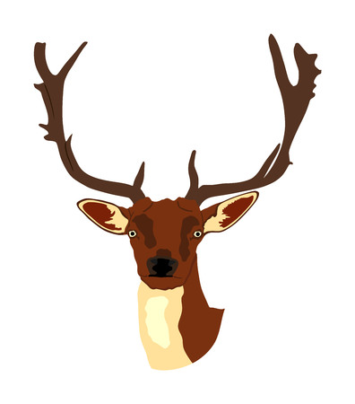 Deer head with antlers vector illustration isolated on white background. Reindeer, proud Noble Deer male trophy. Powerful buck, red deer. Hunter hunting  wild animal, symbol of male power. Stock Vector - 121527852