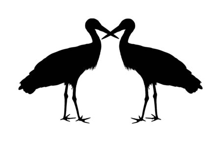 Stork couple in love vector silhouette isolated on white background. Visitant, bird migration symbol. Baby time. Spring coming symbol.