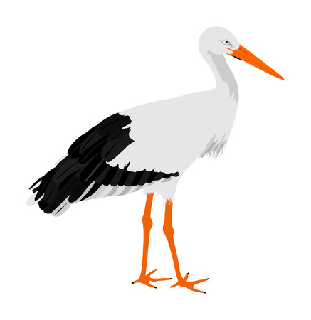 Stork vector illustration isolated on white background. Visitant, bird migration symbol.