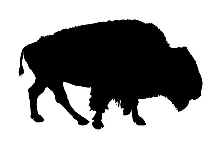 Bison vector silhouette illustration isolated on white background. Portrait of Buffalo, symbol of America. Strong animal, Indian culture. Illusztráció