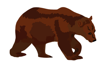 Bear vector illustration isolated on white background. Grizzly symbol. Big animal, nature wildlife concept.