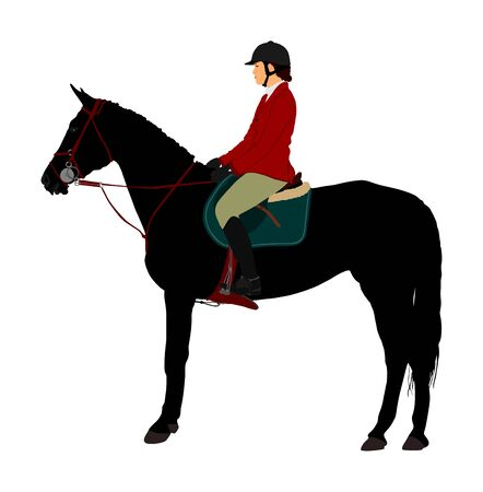 Elegant racing horse portrait vector illustration isolated on white background. Jockey lady riding horse. Hippodrome sport event. Entertainment gambling. Equestrian rider in jumping over barrier show.
