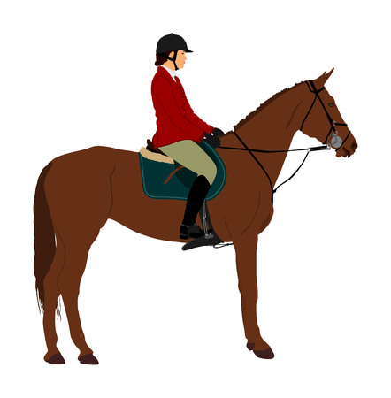 Elegant racing horse portrait vector illustration isolated on white background. Jockey lady riding horse. Hippodrome sport event. Entertainment gambling. Equestrian rider in jumping over barrier show. Vector Illustration