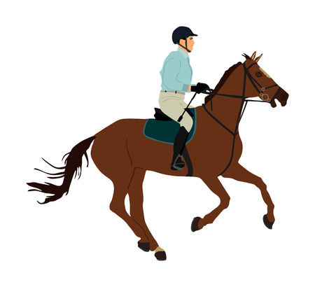 Elegant racing horse in gallop vector illustration isolated on white background. Jockey riding horse in race. Hippodrome sport event. Entertainment and gambling. Derby betting for champion.