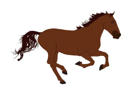 Elegant racing horse in gallop portrait vector illustration isolated on white. Hippodrome sport event. Entertainment and gambling on sport event. Equestrian riding horse for jumping over barrier show Иллюстрация
