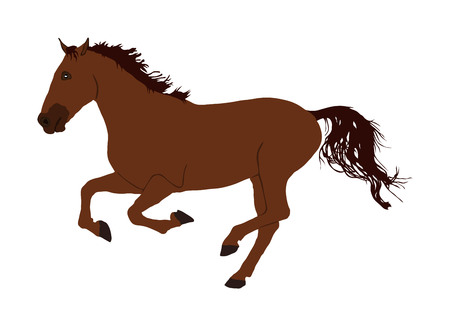 Elegant racing horse in gallop portrait vector illustration isolated on white. Hippodrome sport event. Entertainment and gambling on sport event. Equestrian riding horse for jumping over barrier show Illustration